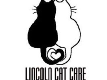 Lincoln Cat Care